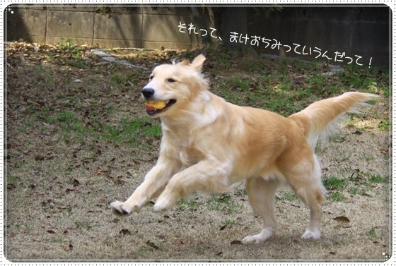 2013,3,30お庭遊び6