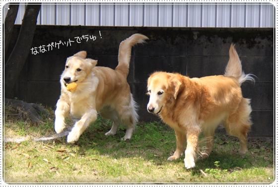 2013,3,30お庭遊び4