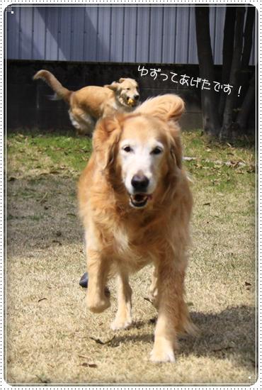 2013,3,30お庭遊び5