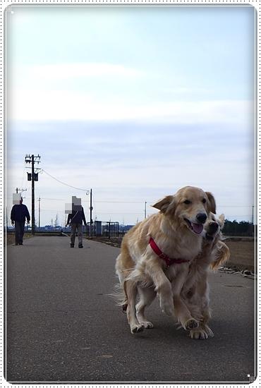 2013,3,31お散歩3