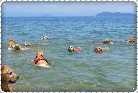 2013,6,16琵琶湖4