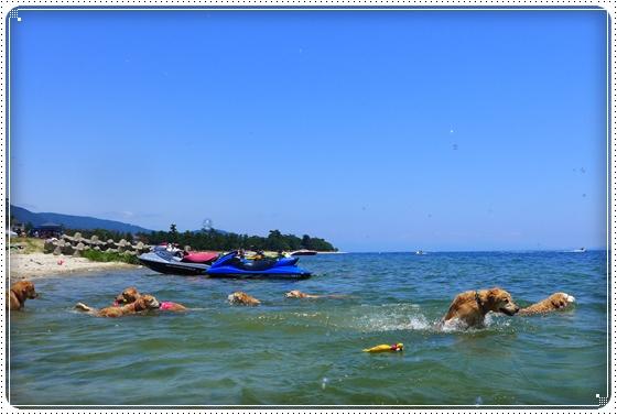2013,6,17琵琶湖2