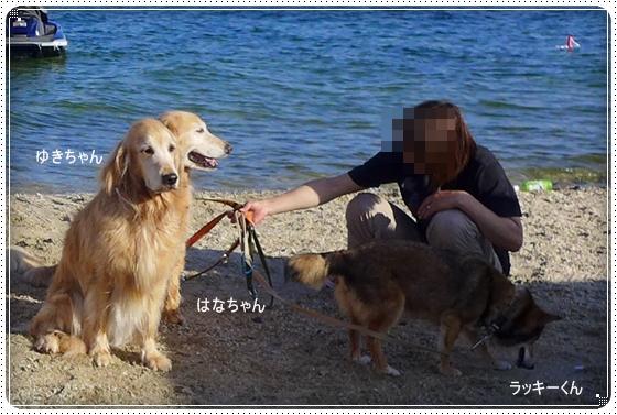2013,6,17琵琶湖1-4