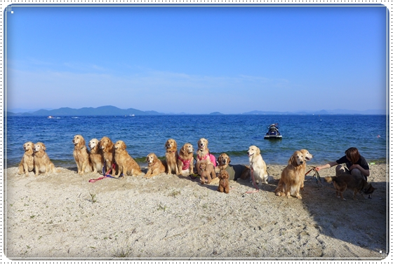 2013,6,17琵琶湖1