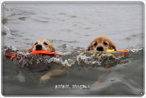 2013,6,17琵琶湖13