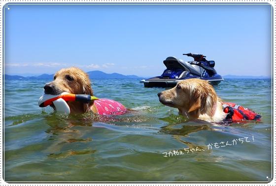 2013,6,17琵琶湖9