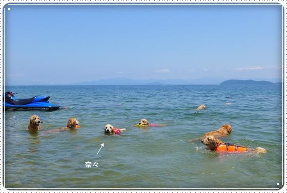 2013,6,17琵琶湖10