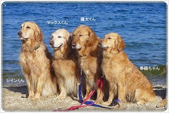 2013,6,17琵琶湖1-2