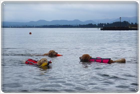 2013,6,22琵琶湖4