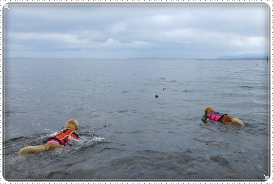 2013,6,24琵琶湖2