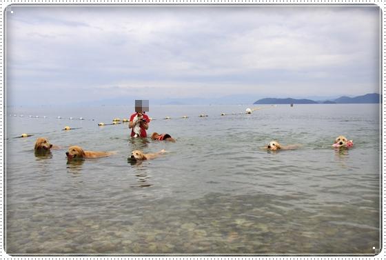2013,7,2琵琶湖1