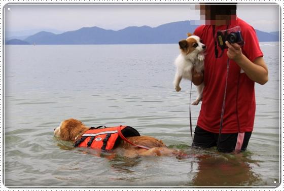 2013,7,3琵琶湖6