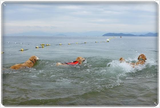 2013,7,3琵琶湖12