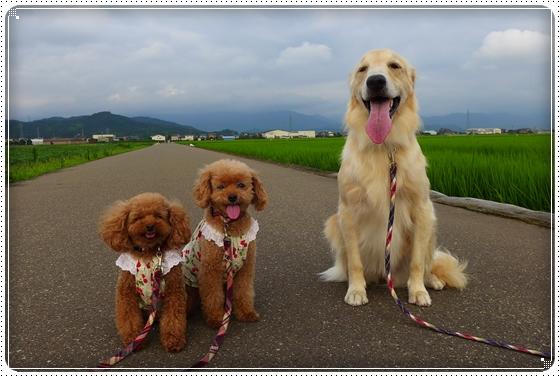2013,7,22琵琶湖1