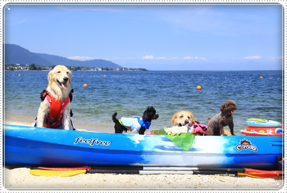 2013,7,24琵琶湖14