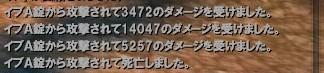 201308243.jpg