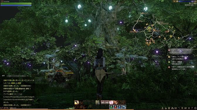 おっきな木