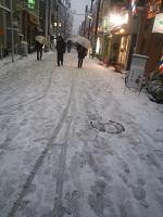 2014-2-8大雪