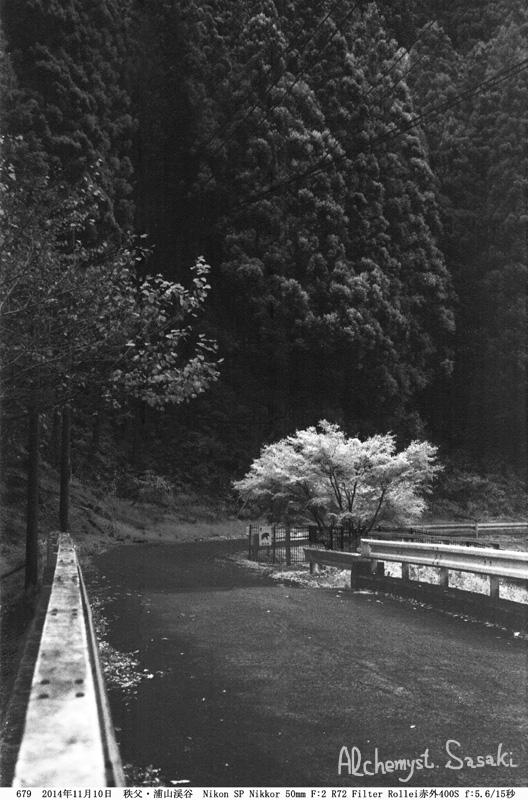 浦山渓谷赤外フィルム677-19