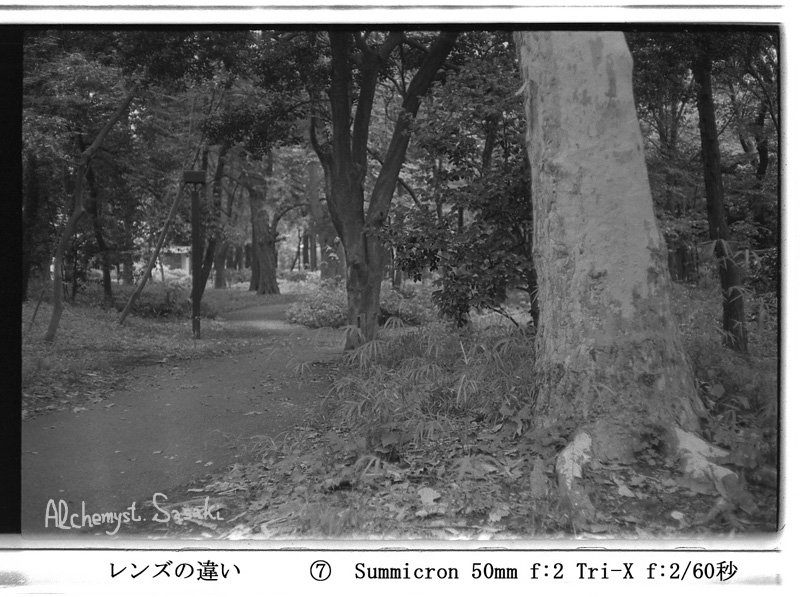Summicron-1.jpg