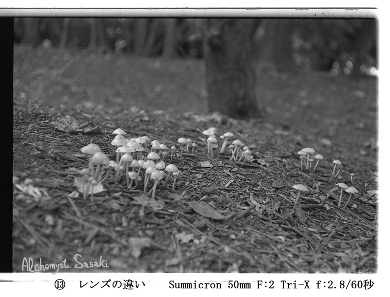 Summicron-2.jpg