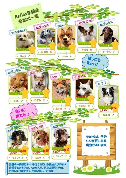 参加犬一覧(ALMAブログ)