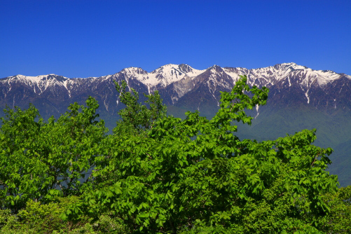 萌える若葉と空木岳・南駒ヶ岳・越百山