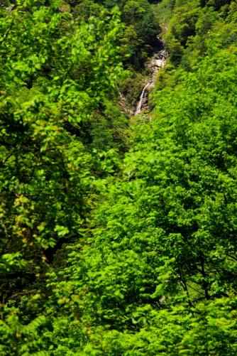 カモシカの滝