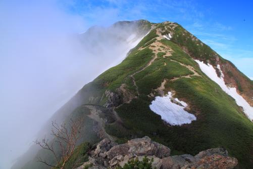 残雪と霧の映える仙丈ヶ岳