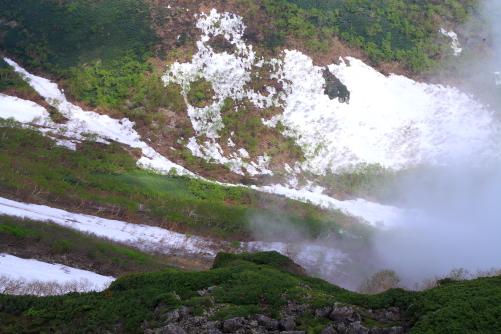 若葉のダケカンバの森と残雪