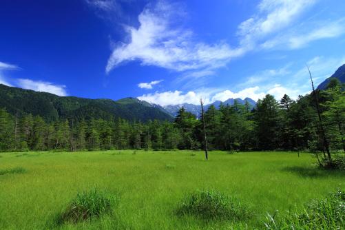 雲の映える田代湿原