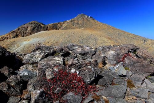 草紅葉と剣ヶ峰