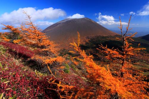 黄葉の彩る噴煙あげる浅間山