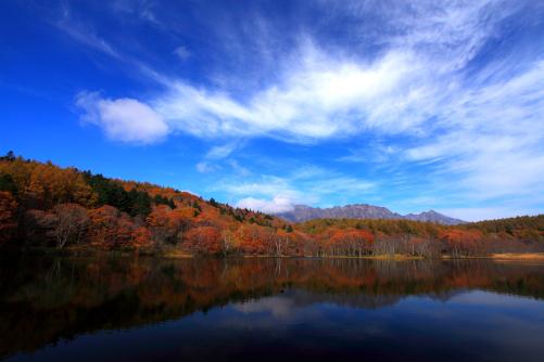 雲の映える小鳥ヶ池の紅葉