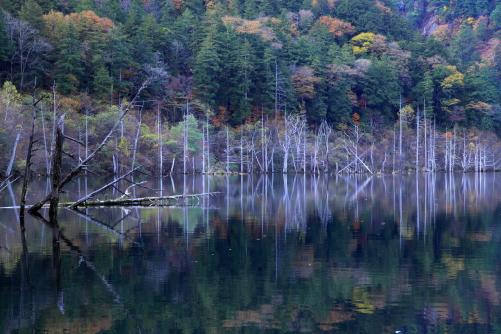 自然湖の秋