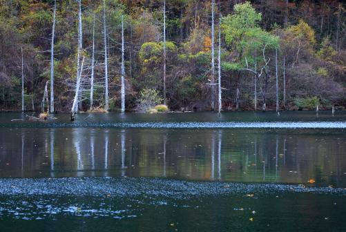 風渡る湖面