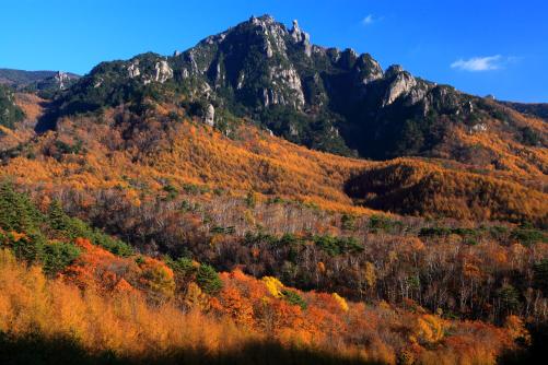 紅葉の映えるミズガキ山