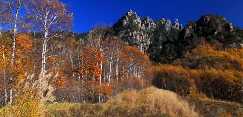 晩秋のミズガキ山