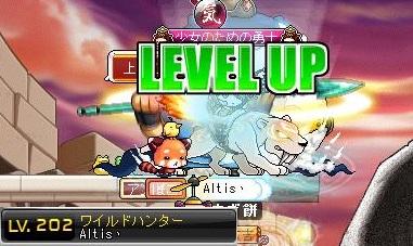 Maple130406_132826.jpg