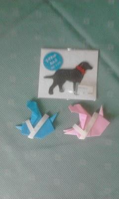 東日本盲導犬協会グッズ20130616_1508