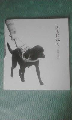東日本盲導犬協会「ともに歩く」20130616_1507