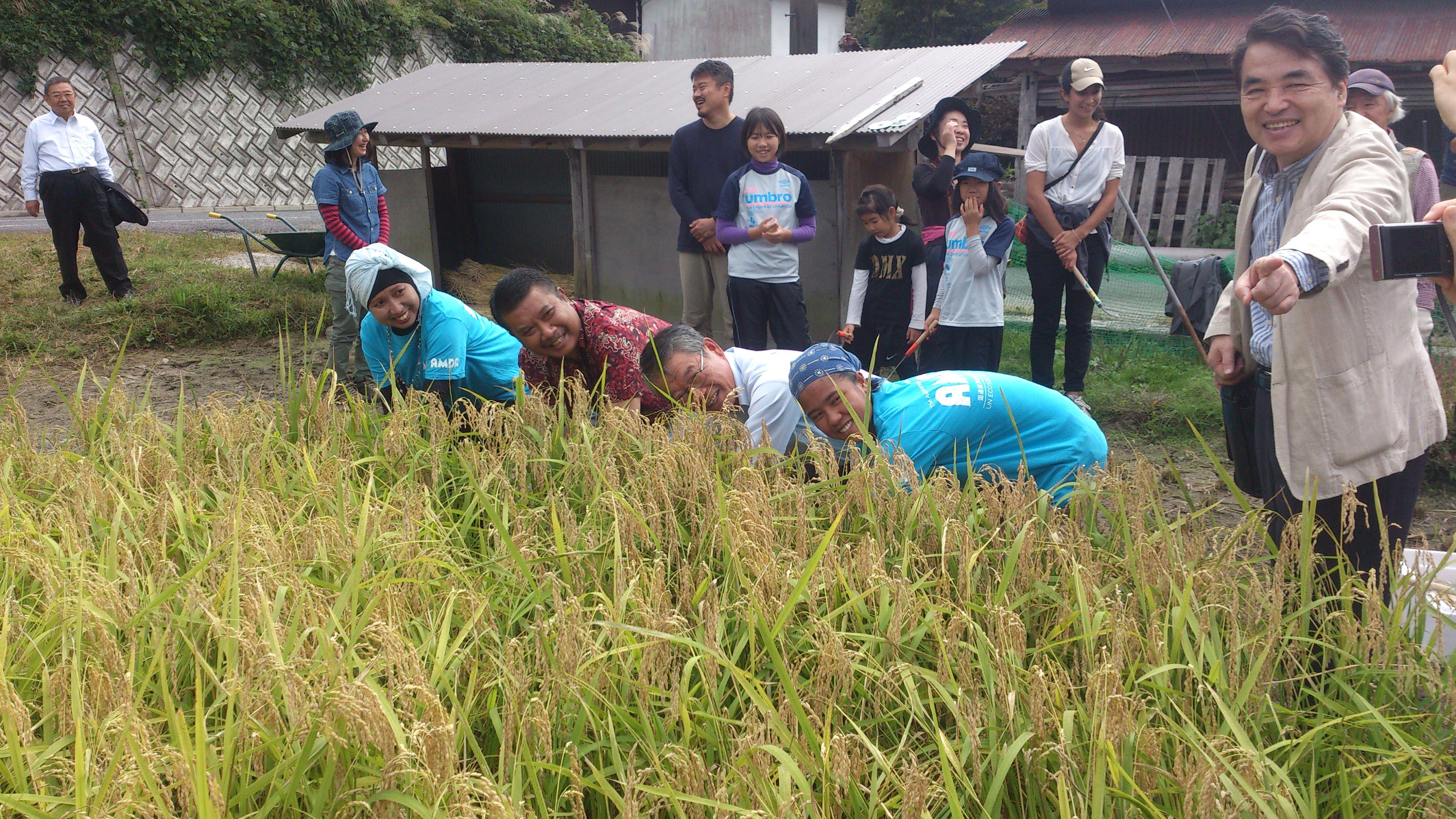総領事と収穫祭