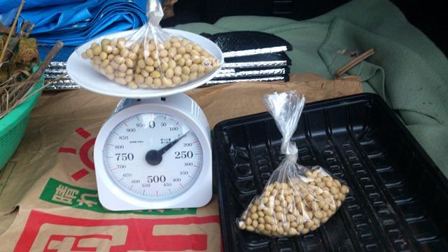 大豆の出荷