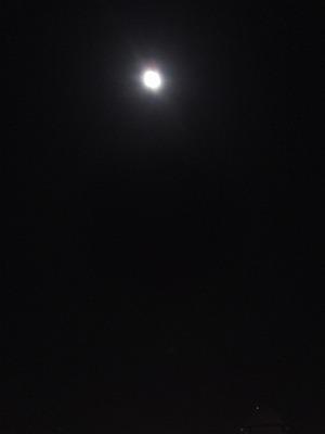 SN3O0032_20130920001544c12.jpg