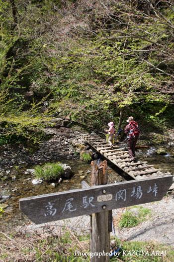 130413kagenobu-1879.jpg