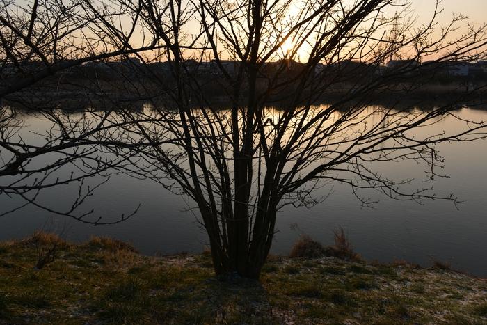 朝の川-2