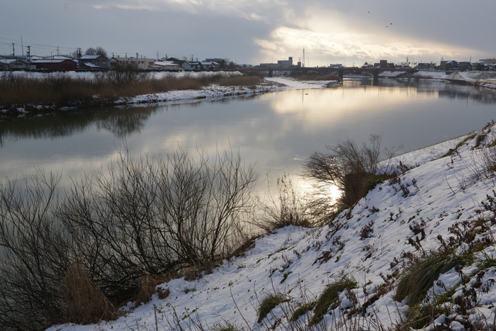 冬の川-2