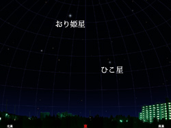 sky_bright_s星座