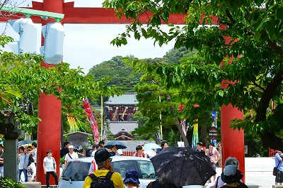 鶴岡八幡宮 011
