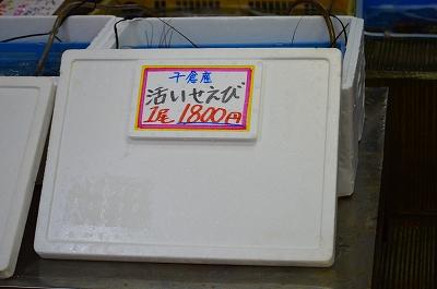 潮風大国 006